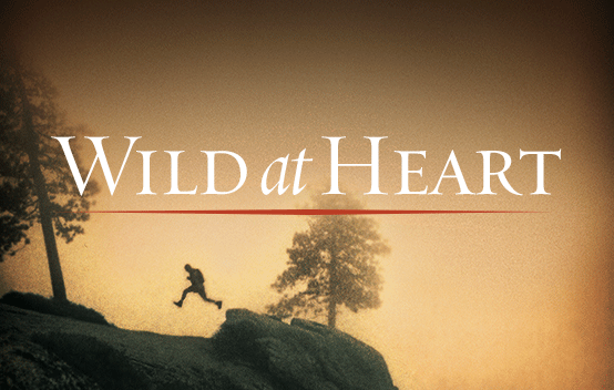 Wild at Heart by author John Eldredge.
